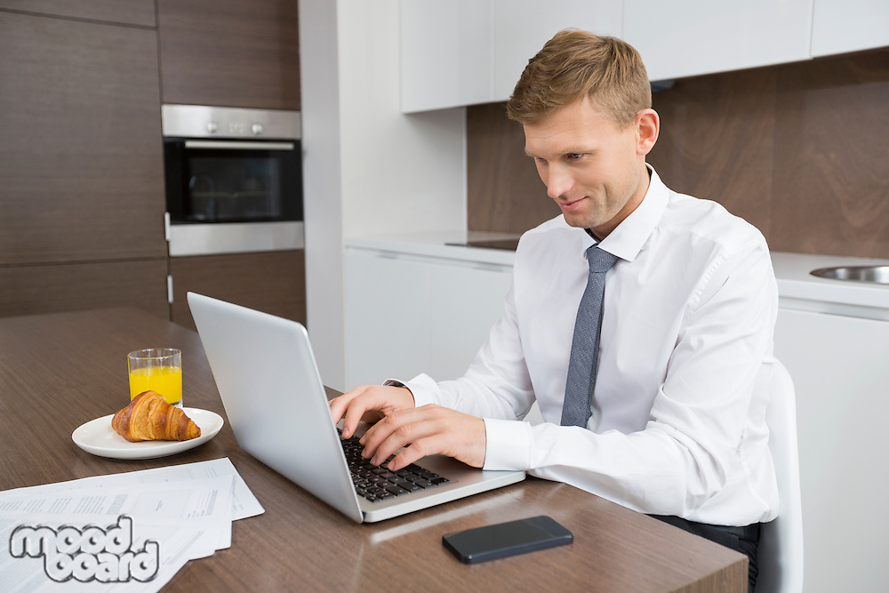 Businessman using laptop at breakfast table