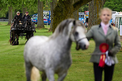 © Licensed to London News Pictures. 12/05/2017. Windsor, UK.  HRH PRINCE PHILIP, The DUKE OF EDINBURGH (left) seen riding a carriage at day three of the Royal Windsor Horse show. The five day equestrian event takes place in the grounds of Windsor Castle. Photo credit: Ben Cawthra/LNP