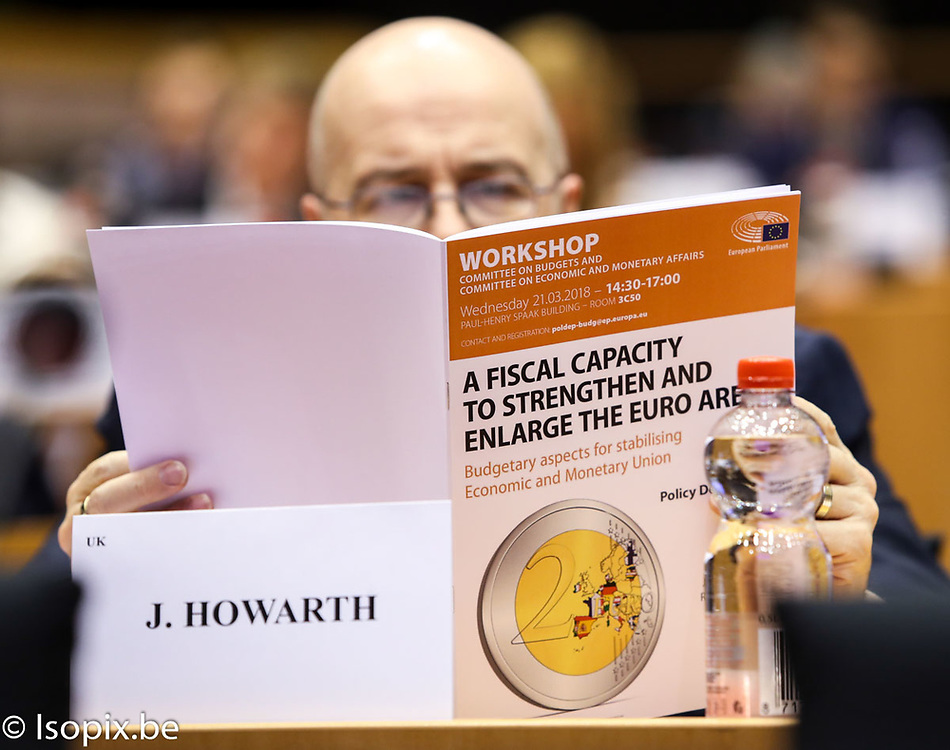 Workshop on a Fiscal Capacity to Strenghen and Enlarge the Euro Area. Budgetary Aspects for Stabilising Economic and Monetary Union
