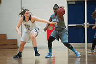 South Burlington's Allie Bosley (12) steals the ball from Burlington's Makayla King (12) during the girls basketball game between the South Burlington Rebels and the Burlington Sea Horses at Burlington High School on Tuesday night Febraury 2, 2016 in Burlington. (BRIAN JENKINS/for the FREE PRESS)