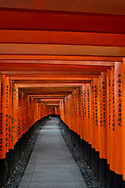 Red Gates at the Fushimi Inari Taisha, a Shinto shrine on Mt. Inari, Kyoto, Arashiyama, Japan