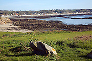 Low tide seaweed L'Eree bay Rocquaine bay beaches, Guernsey, Channel Islands