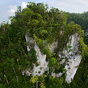 Limestone cliff at 16° 24.42N 88° 54.338'W, Toledo District, Belize