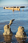 Salt encrusted piers along the coast of the Salton Sea at sunrise Imperial Valley, CA.