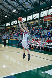 21 January 2017: IHSA Girls Basketball game during the McLean County Tournament at Shirk Center in Bloomington Illinois - Heyworth Hornets v Fieldcrest Knights