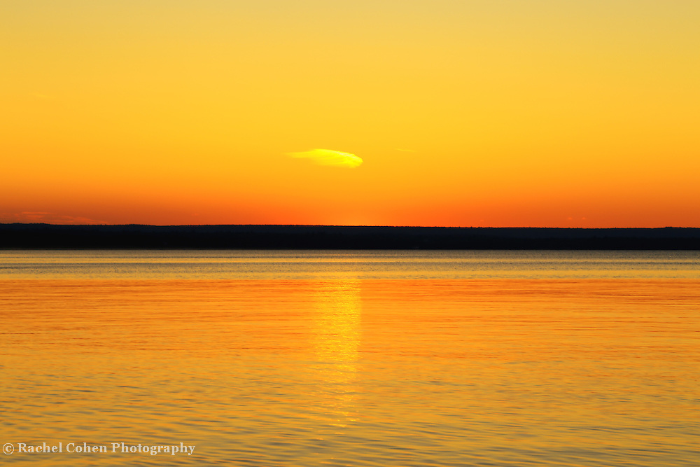 &quot;Sunset's Desire&quot;<br />