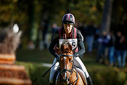 Bullimore Sarah, GBR, Corouet<br /> Mondial du Lion - Le Lion d'Angers 2017<br /> © Dirk Caremans<br /> 21/10/2017