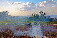Burning fields on a farm near Sabalo, Pinar del Rio, Cuba.
