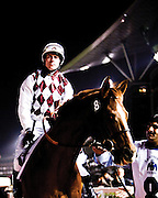 The Dubai World Cup at Meydan Racecourse in Dubai