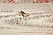 Traditional Jewish Wedding the ketubah and wedding rings