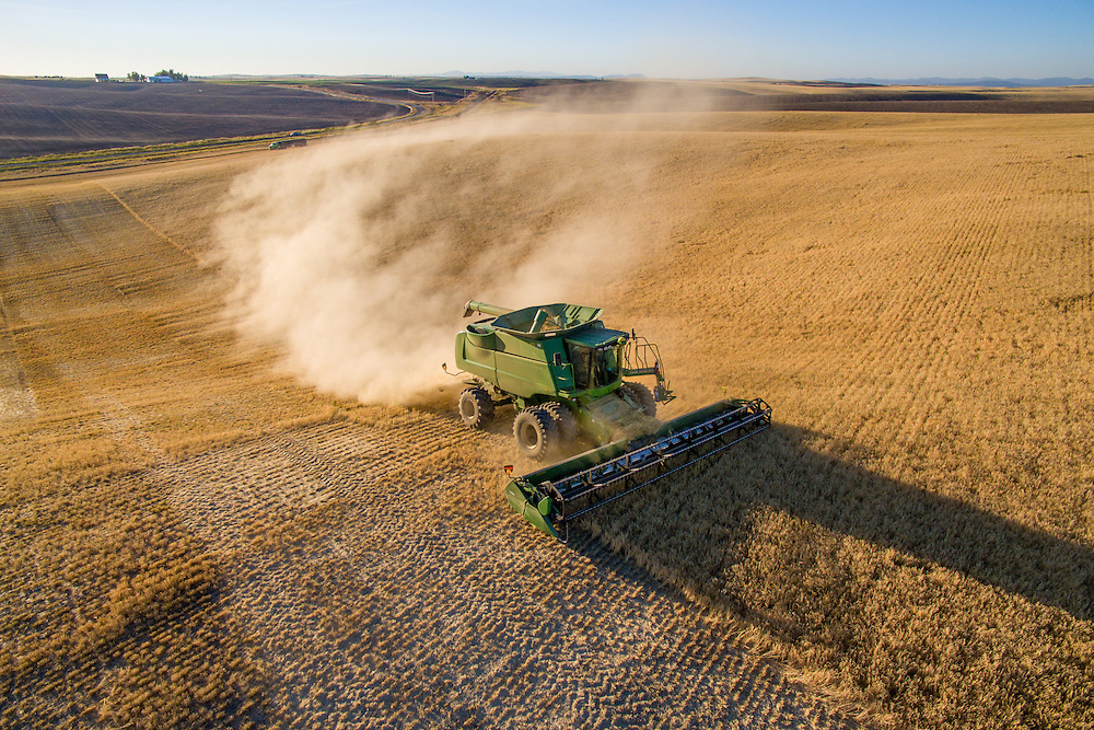 Barley harvest in Reardan, Washington.