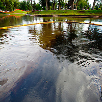 Oil slick is apparent in Liberty Park Pond, Salt Lake City