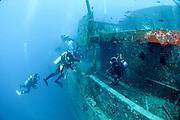 Divers at a shipwreck at Ras Mohammed National Park, Red Sea, Sinai, Egypt,