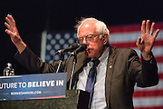 It is not yet clear what influence the Bernie Sanders movement will have on future U.S. policy. His campaign however, was arguably one of the most fascinating cultural events in modern American history. March 23, 2016. Los Angeles, Calif. (Photo by Gabriel Romero ©2016)