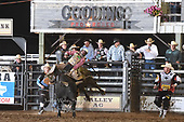Bulls Gooding Sat 18