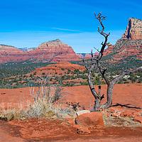Sedona Arizona area landscape with red sandstone cliffs.