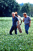 President Jimmy Carter and his brother Billy Carter are joined by a tenant farmer as they assess their summer peanut crop. The Carters own tracts of farmland around Plains, Georgia along with a peanut warehouse in that city, although the President's holdings are held in a blind trust during his presidency. - To license this image, click on the shopping cart below -