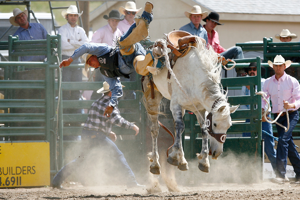 061811-Evergreen, COLORADO-evergreenrodeo-Saddle bronc rider Justin Hegwer, of Rifle, CO, is bucked from his horse during the Evergreen Rodeo Saturday, June 18, 2011 at the El Pinal Rodeo Grounds..Photo By Matthew Jonas/Evergreen Newspapers/Photo Editor