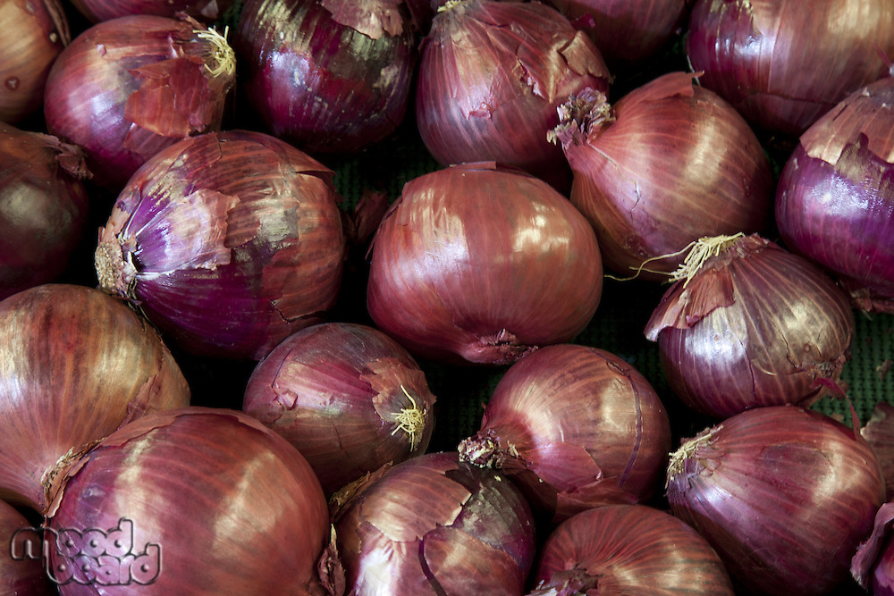 Close-up of red onion on display in market