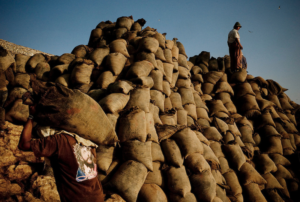 Sacks of raw guano are piled in Guañape Norte Island in the coast off Peru, April 2009.