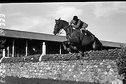 Garland's Mr R. G. 'Echo', Glencoe, Newry, Co. Down. Jumping Competition at Horse Show.08/08/1952