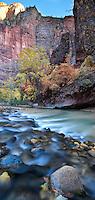 Virgin river at the Temple of Sinawava in Zion national park during the Autumn season.