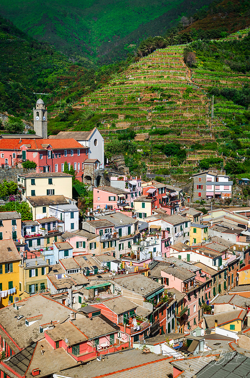 The town of Vernazza and surrounding vineyards from Doria Castle, Cinque Terre, Liguria, Italy