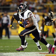 2014 Texans at Steelers