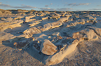 Bisti Badlands, Bisti/De-Na-Zin Wilderness, New Mexico