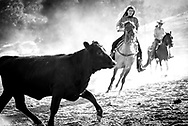 Photos from Rodeo Night at The Alisal Guest Ranch in Solvang, California.
