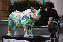 "**CAPTION CORRECTION - Rhino statues are 750mm tall, not 750cm tall, as stated in previous captions**<br /> © Licensed to London News Pictures. 20/08/2018. LONDON, UK. Giulia Tromboni, a tourist from Italy, views ""The Poppy Rhino"", a rhino painted by Zhang Huan, near the Millennium Bridge.  At 750mm tall and weighing 300 kg, each rhino has been specially embellished by an internationally renowned artist.  21 rhinos are in place at a popular location in central London, forming the Tusk Rhino Trail, until World Rhino Day on 22 September to raise awareness of the severe threat of poaching to the species' survival.  They will then be auctioned by Christie's on 9 October to raise funds for the Tusk animal conservation charity.  Photo credit: Stephen Chung/LNP"