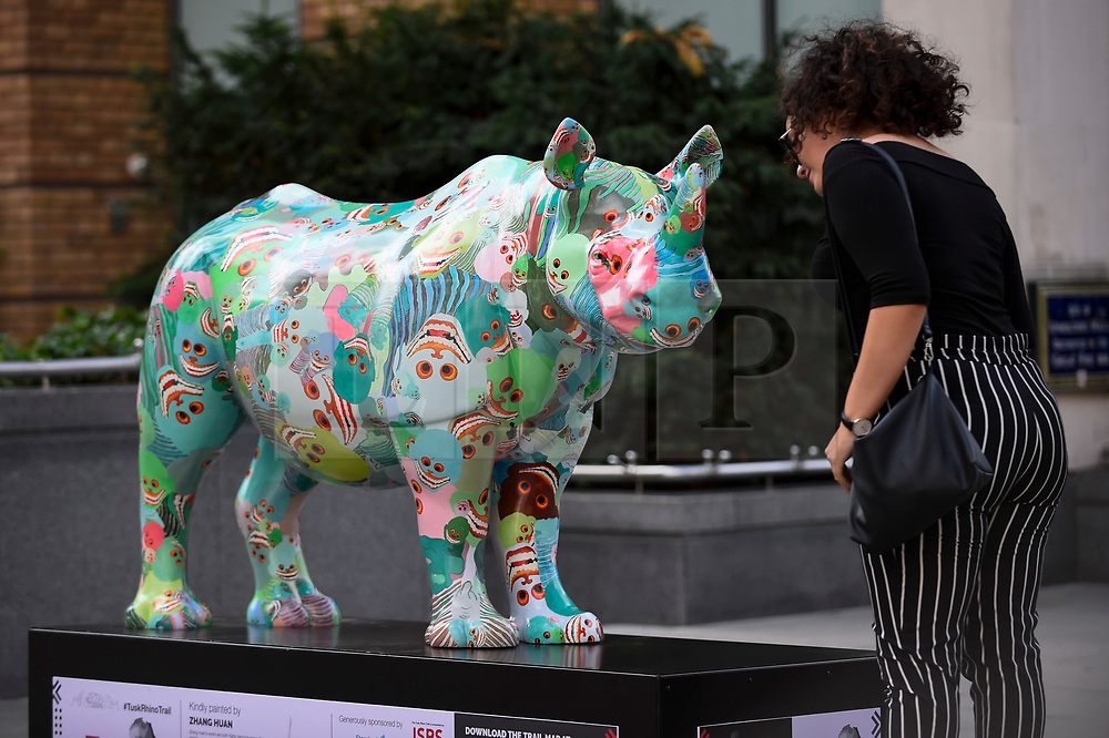 """**CAPTION CORRECTION - Rhino statues are 750mm tall, not 750cm tall, as stated in previous captions**<br /> © Licensed to London News Pictures. 20/08/2018. LONDON, UK. Giulia Tromboni, a tourist from Italy, views """"The Poppy Rhino"""", a rhino painted by Zhang Huan, near the Millennium Bridge.  At 750mm tall and weighing 300 kg, each rhino has been specially embellished by an internationally renowned artist.  21 rhinos are in place at a popular location in central London, forming the Tusk Rhino Trail, until World Rhino Day on 22 September to raise awareness of the severe threat of poaching to the species' survival.  They will then be auctioned by Christie's on 9 October to raise funds for the Tusk animal conservation charity.  Photo credit: Stephen Chung/LNP"""