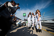 March 17-19, 2016: Mobile 1 12 hours of Sebring 2016. Weathetech grid girls pose for a photo