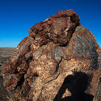 North America, USA, Arizona, Photographer shadow at Petrified Forest National Park. Crystal Forest.