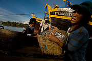 Workers unload the daily catch from the boat to transport it to the local market.