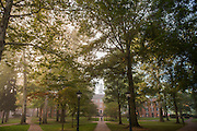 Cutler Hall during the fall. Photo by Ben Siegel
