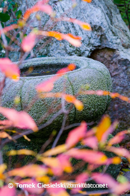 Tsukubai pot in japanese garden
