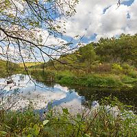 Sky reflected in a still brook