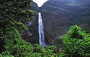 Sao Roque de Minas. Serra da Canastra. Andorinhoes na cachoeira Casca Danta. CROMO..FOTO: Joao Marcos Rosa / Agencia Nitro