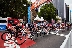 Tayler Wiles (USA) leads the Trek Segafredo line during Stage 4 of 2020 Santos Women's Tour Down Under, a 42.5 km road race in Adelaide, Australia on January 19, 2020. Photo by Sean Robinson/velofocus.com