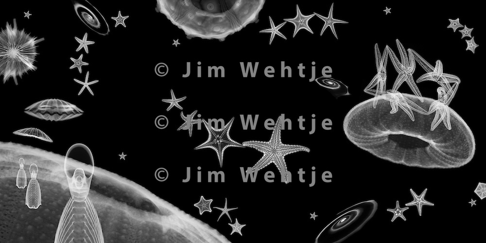 X-ray image of a space scene (white on black) by Jim Wehtje, specialist in x-ray art and design images.