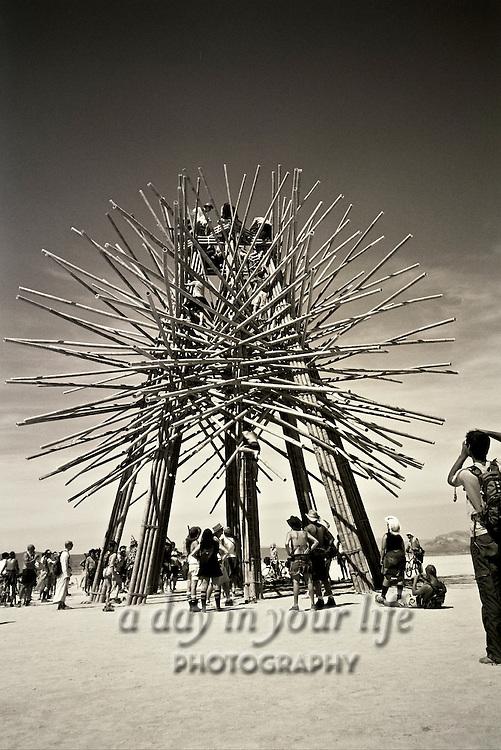 Art work from Burning Man Festival