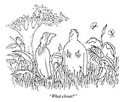 """What closet?"" (a cartoon showing Adam and Eve in the Garden of Eden after having covered their shame with leaves)"