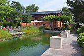 Natural Pool 907