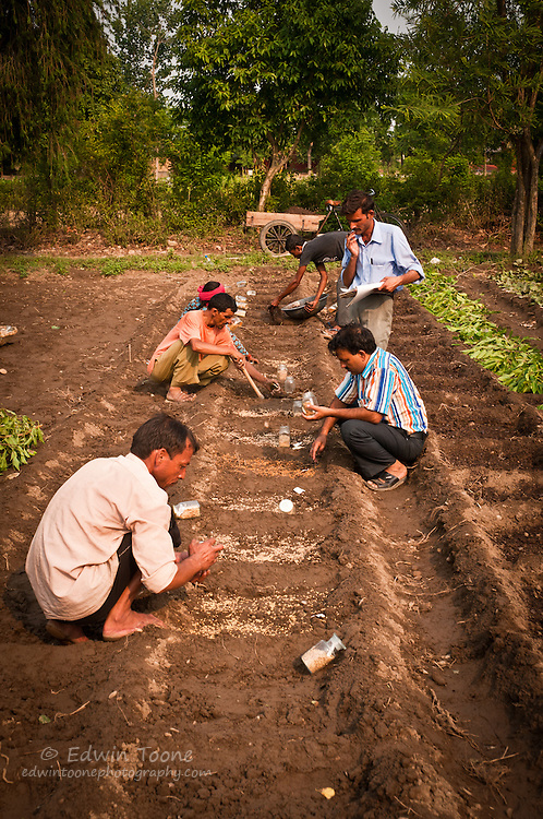 Farmers and scientist work together to manage and keep track of the seed planted.