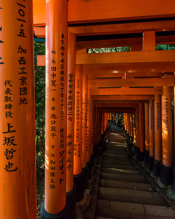 The main feature of Fushimi Inari Shrine is the countless rows of red Tori spreading through the forest paths in the mountain side.