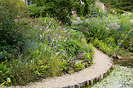 A rustic seating area next to a pond and fountain surrounded by densely planted beds of Liberta procera, Allium obliquum, Geranium and Astrantia in Derry Watkin's Special Plants Garden in Cold Ashton, Chippenham, Somerset, UK