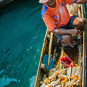 The bounty of the sea sold fresh in Cartagena, Colombia.