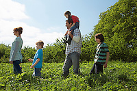 Parents and children (5-9) in a row in strawberry field