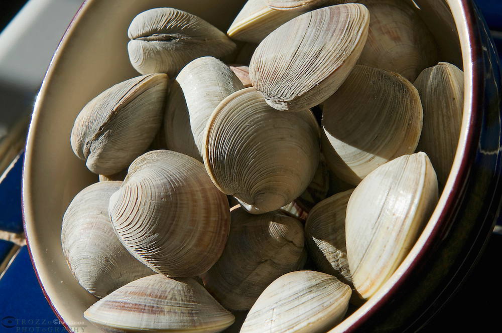Little neck clams ready to cook.